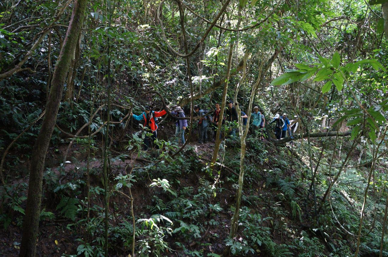 03雨林穿越